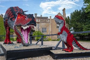 T-Rex and baby T-rex. Picture: Jason Brown