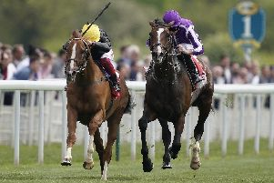 Southern France, right, runs Stradivarius close in the Yorkshire Cup this season. Picture: Alan Crowhurst/Getty Images