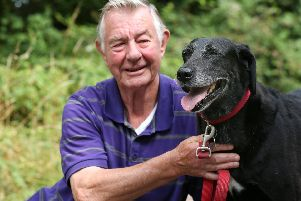 Morris Mansbridge was faced with a vets bill for dental work for his dog, Bonnie, which his pet insurers wouldn't pay. Pictured in Portchester. Picture: Chris Moorhouse     (260719-91)