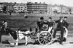 A strange form of transport in the 1920 was this Hansom cab being drawn by a goat along Southsea seafront. Photo: Jackie Baynes postcard collection.