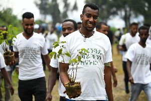Ethiopians planted more than 353 million trees in 12 hours to beat climate change. Pic:Getty Images