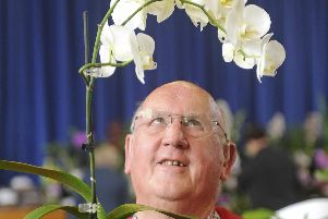 An exhibitor at the 2017 Wessex Orchid Society Show held at Portchester Community School.
