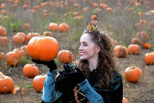 The Pumpkin Princess at Rogate Pumpkin Patch