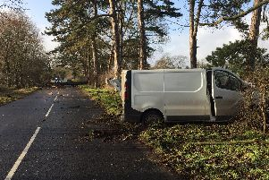 The van was hit by a falling tree. Picture: Hants Road Policing via Twitter