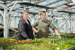 Peter Healey and his Wife who own Greenleaf Nursery, Banbury Road, Southam, face having to move both their business and home where they  have been for over 20 years. The proposed HS2 line, will run straight through the site. NNL-180105-222716009