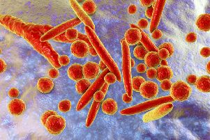 Mycoplasma bacteria, 3D illustration showing small polymorphic bacteria which cause pneumonia, genital and urinary infections. Shutterstock