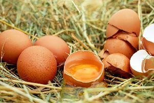 Warning over contaminated eggs SUS-190923-115453001