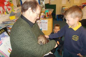 Graham Bowring of St Francis Animal Welfare brought some hedgehog visitors to Upper Beeding Primary School
