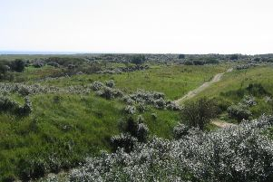 Gibraltar Point has been named as one of the best UK nature reserves for walks and wildlife.