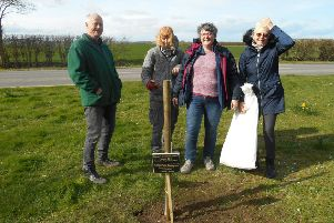 Planting the trees, (from left) Ken Penson, Christina Melaugh, Coun Jean Shutt, and Jan Clarke.