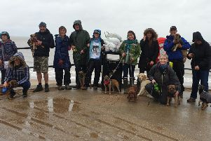 Members of #BTPosse - a group of Border Terrier owners and friends - had a Tweetup litter picking on Skegness beach.