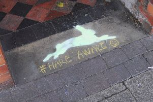 New Hare Aware chalk paintings are to begin appearing around Sleaford. EMN-180928-094823001