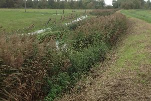 The reeds choking the River Slea were close to causing a flood in parts of Sleaford says Paul Cleaver. EMN-191015-155408001