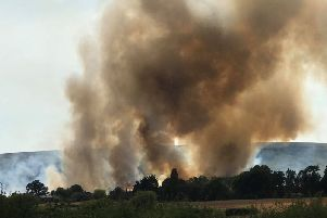 Fire near Drusillas. Photo by Kirsty Eaton SUS-180725-161633001