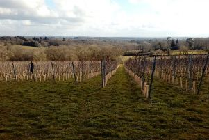 Vineyard near Cross-in-Hand granted alcohol licence