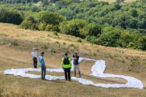 The penis protest atop Coombe Hill on Friday