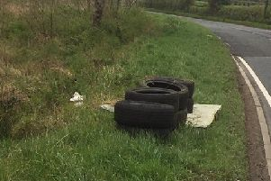 Illegal dumping at beauty spot 'deporable'
