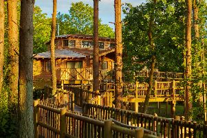 Center Parcs has announced that it is launching a nationwide search for The UK's Top Treehouse, led by wildlife presenter and adventurer Steve Backshall.