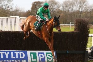 Torpillo jumps the second fence on his way to victory in the Highflyer Bloodstock Novices' Chase. Picture: www.dwprattracingphotography.co.uk