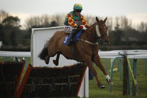 Lil Rockerfeller - 2016 winner of the National Spirit Hurdle / Picture by Clive Bennett