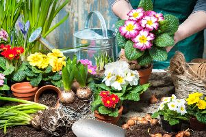 A two-day 'Growing Together' event featuring workshops and talks on gardening will be held this weekend as part of the Kinder Living Home Show SUS-190226-163845001