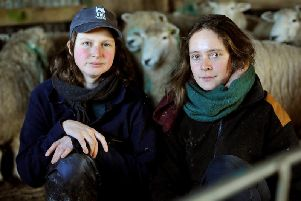 Shepherds Gala Bailey-Barker and Rose Bramwell with the sheep that survived at Hillsdown Farm. Photo by Steve Robards