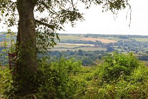 Villagers in Bury plan to plant 1,000 trees