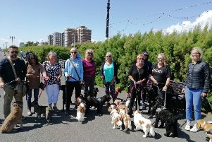 Dog owners oppose to changes to a public spaces protection order in Worthing pictured in the summer