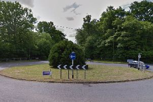 Polly Barnes hopes to decorate the tree on the Worthing Road roundabout off the A24. Photo courtesy of Google Street View