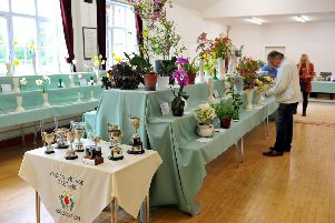 Findon Village Gardens Association spring flower show. Pic Steve Robards SR1909256 SUS-190804-104812001