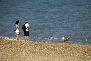 Proposed amendments to the Public Spaces Protection Orders could see dog owners forced further out of Worthing town centre during the summer
