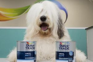 The famous Dulux dog will be at the opening of the new Dulux Decorator Centre in Crawley