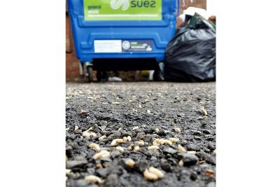 Clean Your Premises Says District Council As Hundreds Of