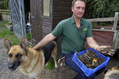 Canine companion helps Saltfleet man unearth 40 bullets from the