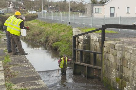 Volunteers of the Newry and Portadown branch of the IWAI restoring the Newry Canal.