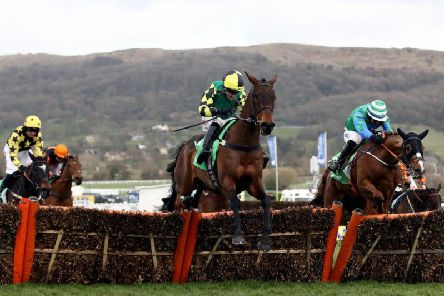 Lisnagar Oscar and Adam Wedge on their way to winning the Paddy Power Stayers' Hurdle