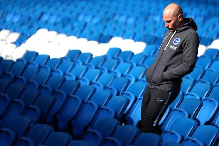 Aaron Mooy's experiences of previous relegation battles will be crucial for Brighton in the coming matches