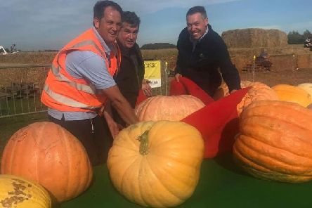 The weigh-in at last year's Pumpkin Patch.