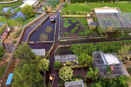 An aerial view of the flooding at the Lincolnshire Wildlife Park.