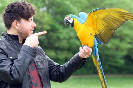 Curtis Fullman with Rhaegar the macaw. Picture: Derek Martin