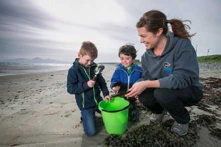 Coast lovers and sea anglers are being urged to get involved to help safeguard NI's endangered sharks, skates and rays through events around the North Coast this summer - seadeepni.org