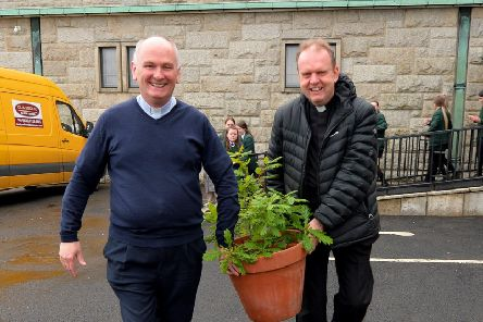 "Fr Paul Fraser and Fr Joe Gormley carry an Oak sapling for planting to commemorate the 60th anniversary of St Mary�""s Church Creggan. DER2219GS-026"