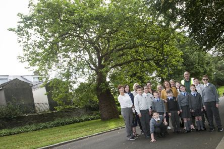 Mayor Michaela Boyle pictured at Brooke Park with children from local primary schools lending their support for the Knobbly Tree in the N. Ireland Tree of the Year competition.