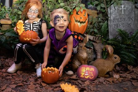 Boo at the Zoo is from Saturday, October 19 until Thursday, October 31