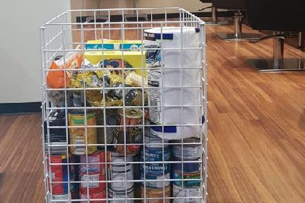 The food collection