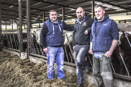James Alexander is pictured with Pearse McNamee and Eamon McGarry from Dovea Genetics ahead of the Jalex Herd Open Day which takes place on Saturday 9th March (11am to 3pm).