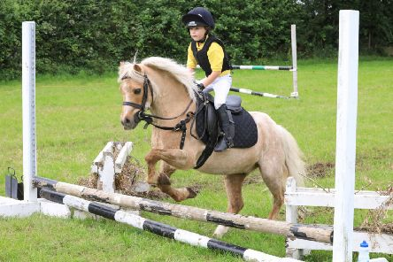 East Antrim pony club junior camp a big hit
