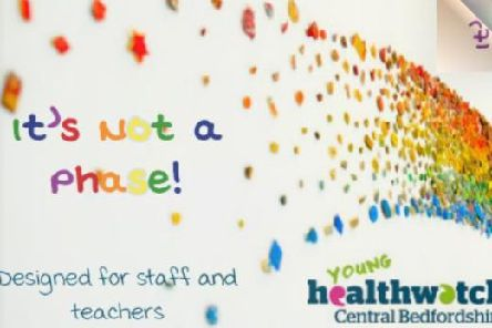 Credit: Young Healthwatch Central Bedfordshire.