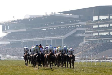 All roads lead to Cheltenham next month
