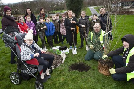"The Mayor of Derry City and Strabane District Council, Michaela Boyle, pictured at Brooke Park  with pupils from local primary schools - Rosemount, Model and St. Anne's, helping plant a Magnolia Merrill tree in celebration of the Council's success in the recent Tree of the Year competition. Included are Emma Barron, Parks Manager, DCSDC, and Brooke Park groundspersons Johnny Mitchell and Owen Watkins. At back are Mrs. Eilish McGuinness and Mrs. Aine Walsh, St. Anne�""s PS and Mrs. Michelle Ramsey, Principal, Model PS. (Photos: Jim McCafferty Photography)"